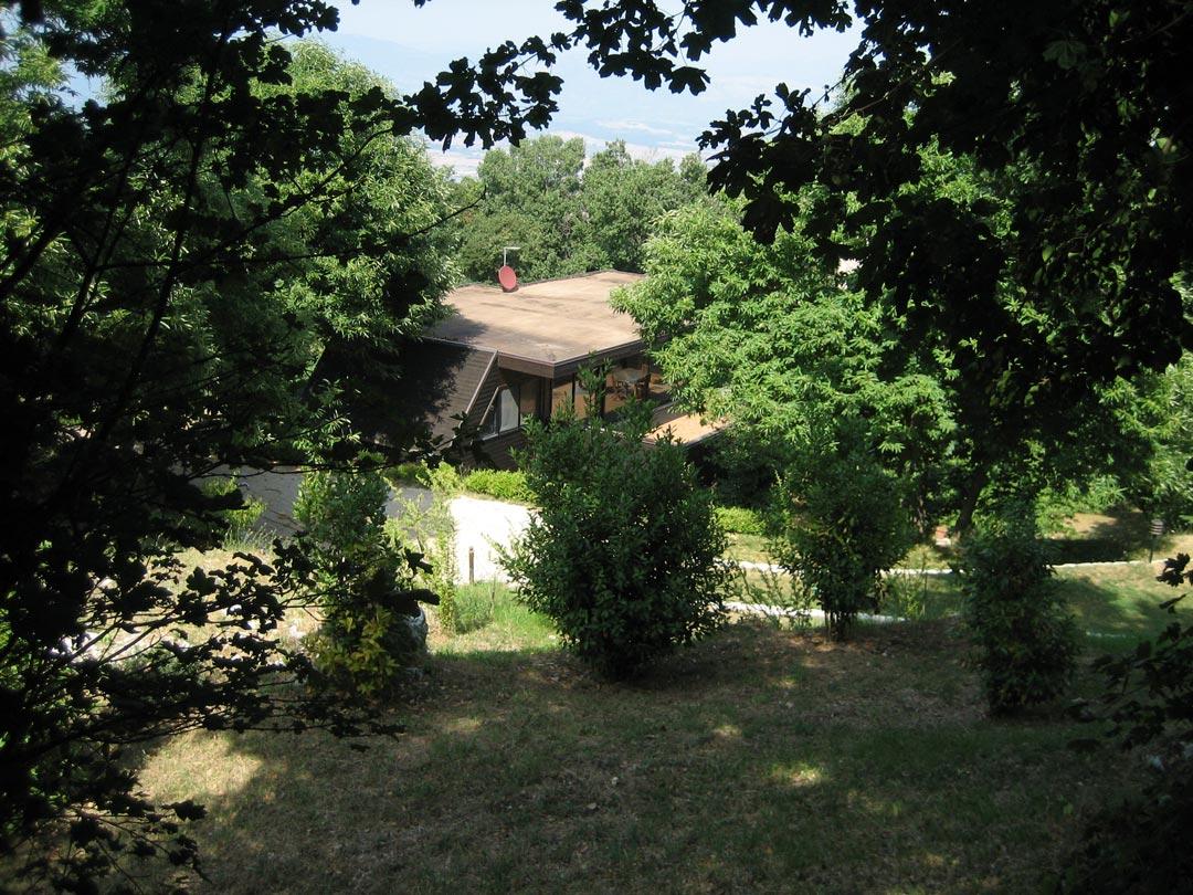 la-casa-nel-bosco-4