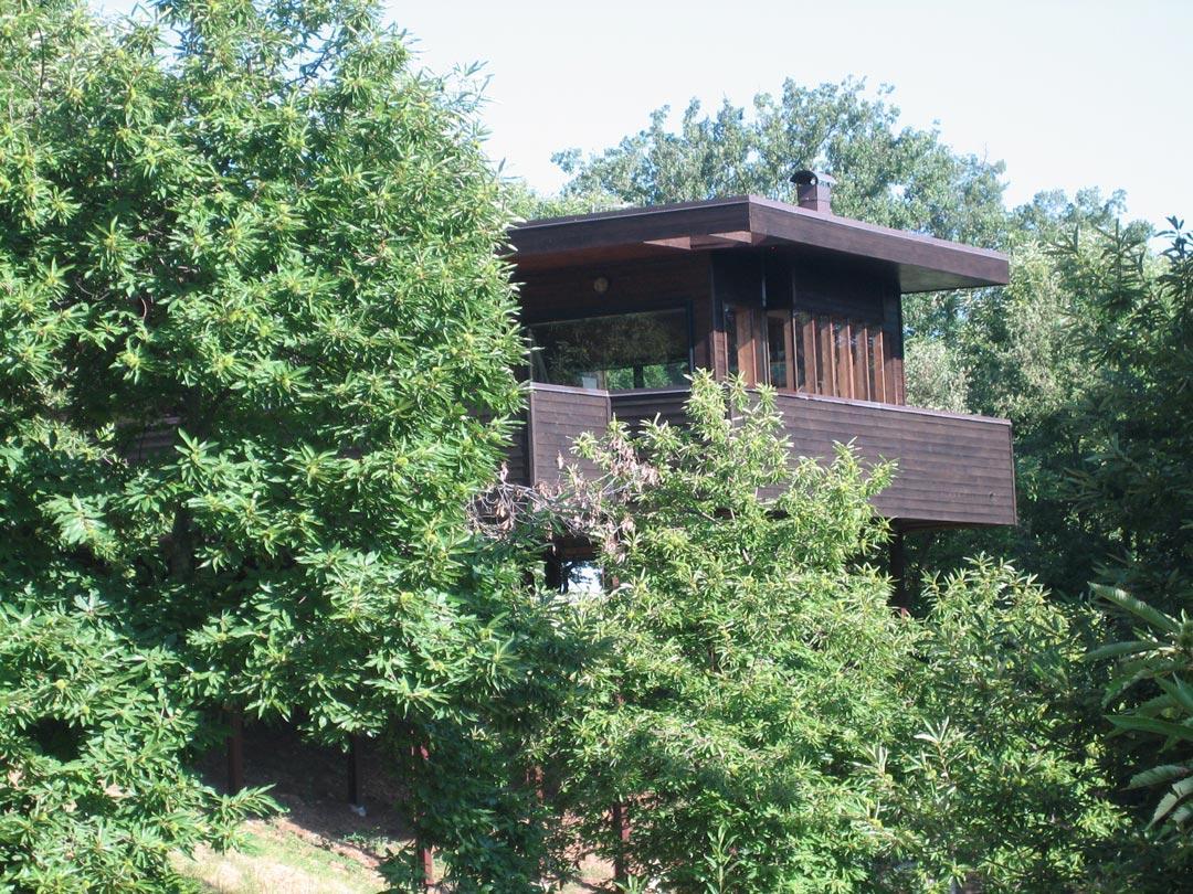 la-casa-nel-bosco-8